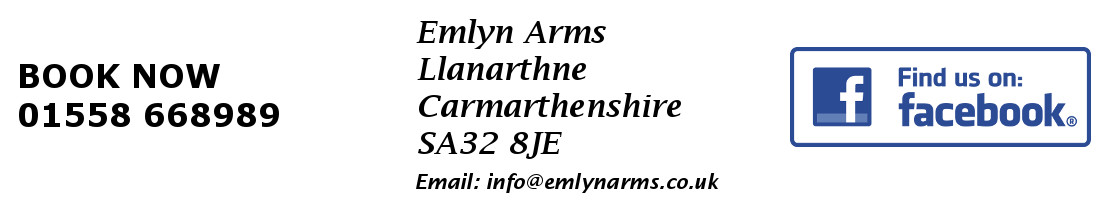 Emlyn Arms logo and page footer